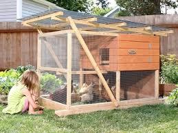 best 20 backyard chicken coop plans ideas on pinterest diy media