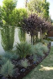 Ideas For Backyard Landscaping Best 25 Privacy Fence Landscaping Ideas On Pinterest Fence