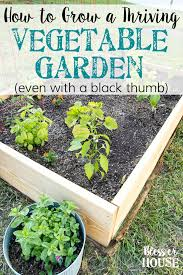 how to plant a thriving vegetable garden bless u0027er house