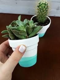 plant pot paint 6 cute interior and diy painted succulent pots