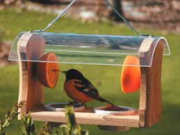 oriole bird feeders and nectars