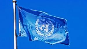 Flag El Salvador El Salvador Gangs Forcing Women Children Into Slavery United Nations