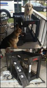 Bunk Bed For Dogs Dog Bunk Beds Best Ideas Easy Video Instructions