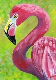 best 25 flamingo bird ideas on pinterest pink flamingos birds