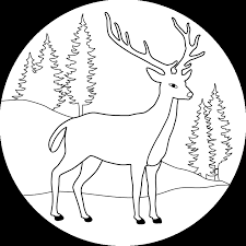 forest coloring pages kids coloring