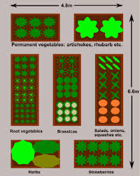 raised bed vegetable gardens plan for a large garden