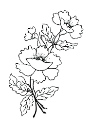 coloring pages remembrance day remembrance day coloring pages remembrance day colouring page