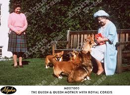 Queen Corgis The Queen U0026 Queen Mother With Royal Corgis Corgi The Royal