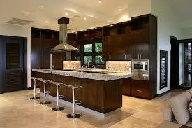 cuisine wengé meuble de cuisine couleur wengé idée de modèle de cuisine