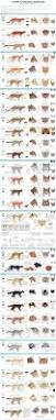 288 best ref images on pinterest drawing drawings and anatomy
