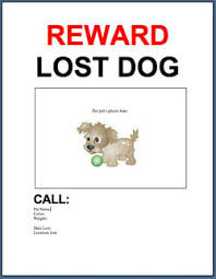 download free lost found dog cat flyer poster adoptapet com blog