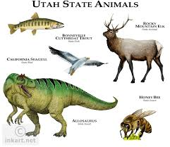 Utah wild animals images Full color illustration of a state animals of utah animals jpg