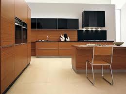 Modern Wood Kitchen Cabinets by Modern Kitchen Great Modern Kitchen Cabinets Designs Ideas