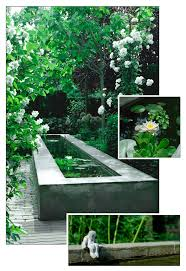 Patio Pond by Best 25 Modern Pond Ideas On Pinterest Modern Garden Design
