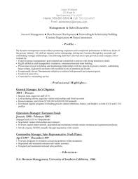 executive summary for resume examples doc 8001035 resume example sales it sales resume it sales vp sales resume summary executive summary resume examples resume resume example sales