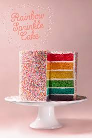 best 20 sprinkle cakes ideas on pinterest rainbow sprinkle