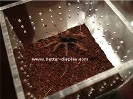 reptile terrarium reptile terrarium suppliers and manufacturers