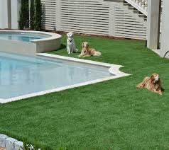 pet turf artificial grass for dogs progreen synthetic grass