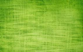 lime green halloween background attractive green background