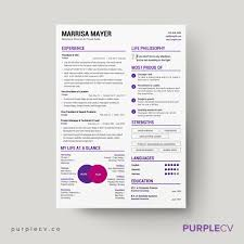Resume Templates For Cooks Professional Resume Template U2013 Simple Resume Templates For