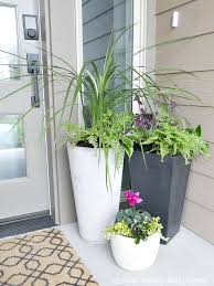 How To Decorate A Tin Best 25 Front Porch Planters Ideas On Pinterest Front Porch