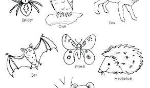 coloring pages animals hibernating hibernating animal coloring pages animals nocturnal fuhrer von