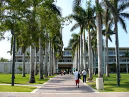 Best Fashion Schools In Florida Best National Research Universities 2017 College Choice
