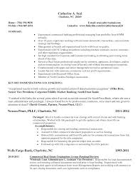 Resume Sample Vice President by Simple Experienced Resume Sample With Key Recommendations Expozzer