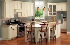 Birch Kitchen Cabinets Kitchen Dark Grey Kitchen Grey Stained Cabinets Birch Kitchen