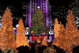 amazing nychristmas tree rockafeller lights up theity