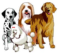 Types Of Dogs How Many Breeds Of Dogs Are There In The World Psychology Today