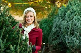 real christmas trees for sale 4 best places to buy real christmas trees in ta bay