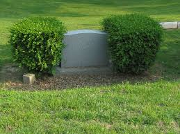 a grave interest serene and evergreen cemeteries allowing