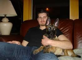 belgian malinois puppies 6 months mason u0027s kennels malinois testimonials page