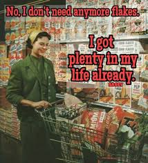 Corn Flakes Meme - i don t need anymore flakes i got plenty in my life already sassy