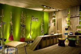 Amazing Interior Design Ideas Amazing Green Interior Design Wood Wall Motive Home Interior