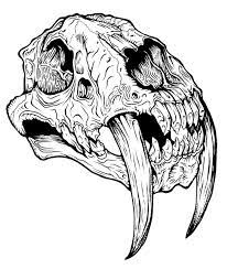 sabre tooth tiger skull google search jackson pinterest tattoo