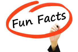 10 facts about accountants accountex
