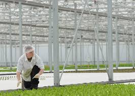 how to get usda certified a battle over hydroponics shows that the usda organic
