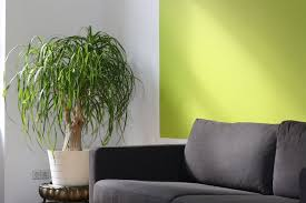 Elements Home Decor How To Use Feng Shui Shapes And Elements In Home Decor