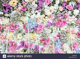 wedding backdrop background beautiful real flower background for wedding backdrop stock photo