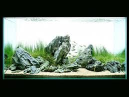 Amano Aquascaping Film Takashi Amano Aquarium Aquascaping Aquarium Pinterest