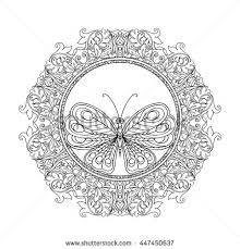 gypsy butterfly stock images royalty free images u0026 vectors
