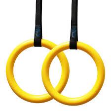 Winter Garden Gymnastics - amazon com gymnastic rings with straps crossfit training