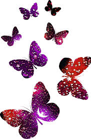 butterfly logo abstract colorful butterfly pattern 523 798