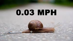 snail speed support for moms power of moms
