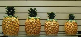 kitchen decorative canisters kitchen amusing pineapple decorations for kitchen pineapple