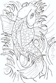 japanese koi fish tattoo drawing photos pictures and sketches