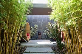 Bamboo Backyard Creative Idea Minimalist Backyard With Modern Pool And Rustic
