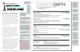 Best Resume Format For Students Resume Title Examples Of Resume Titles Resume Sample First Job